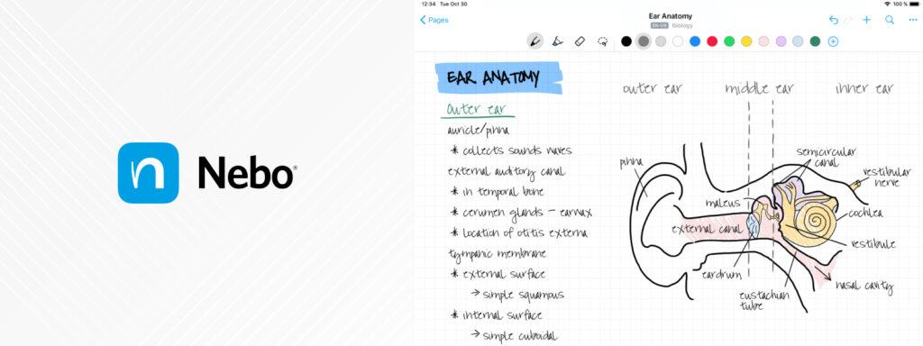 Best business apps for the Digital pen | Computing Australia